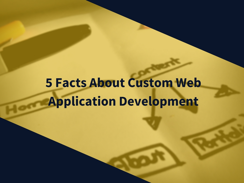5 Facts About Custom Web Application Development