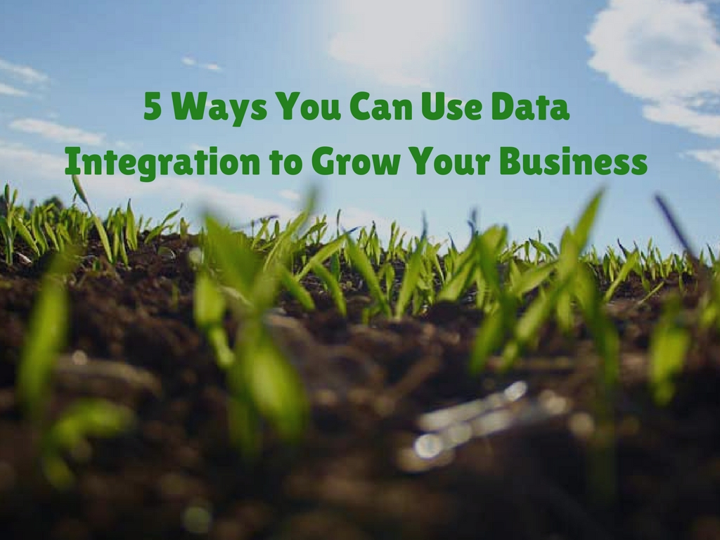 5 Ways You Can Use Data Integration to Grow Your Business
