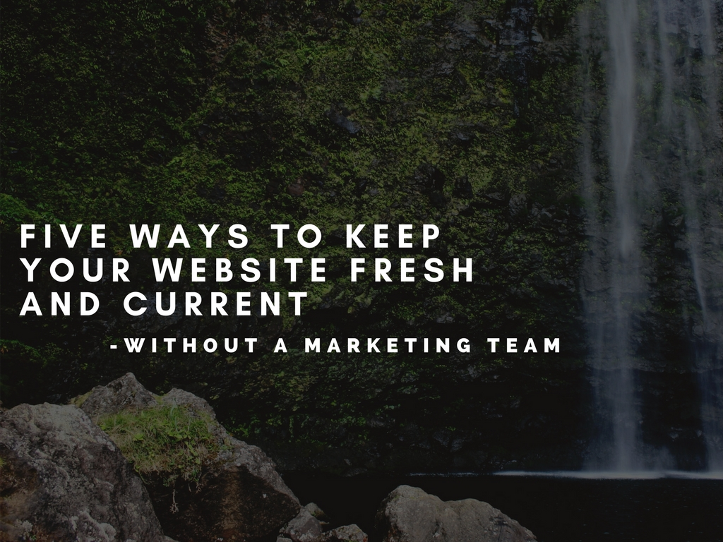 Five Ways To Keep Your Website Fresh and Current - Without a Marketing Team