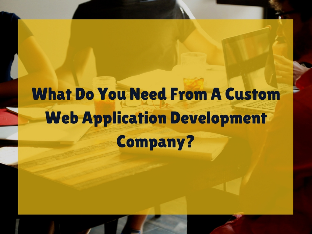 What Do You Need From A Custom Web Application Development Company