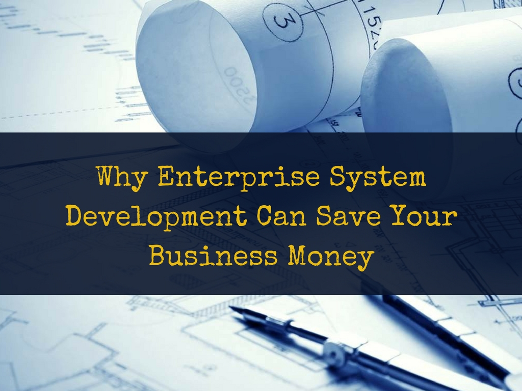 Why Enterprise System Development Can Save Your Business Money
